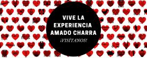 Experiencia Amado Charra