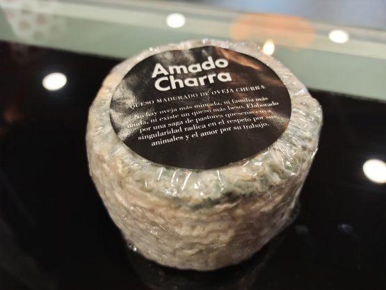Queso madurado de oveja churra con pencillium roqueforti